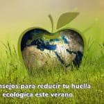 Huella ecológica medio ambiente