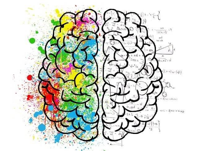 como funciona la mente